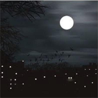 Photo of في الليل