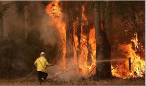 Photo of أستراليا تقرّر إعدام 10 آلاف جمل  بسبب الاحتباس الحراريّ