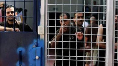 Photo of فروانة: 540 أسيراً فلسطينياً في سجون  الاحتلال يقضون أحكاماً بالسجن المؤبد