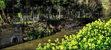 Photo of محافظة دمشق تمنع التنزّه والتجوّل في حدائق العاصمة لإشعار آخر