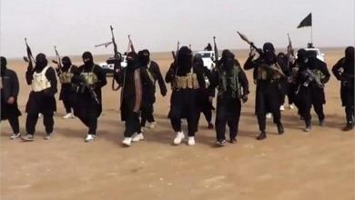 Photo of تنامي الحركات الإرهابية في القارة الأفريقية… تركيا المَصدَر والمُصدِّر
