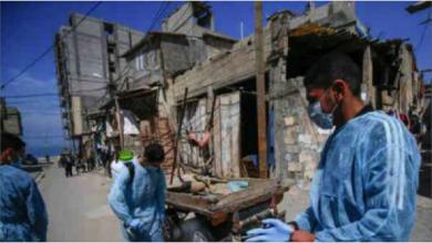 Photo of الغارديان تتحدّث عن توقعات مواجهة  العالم لطوارئ صحيّة كل 5 أعوام