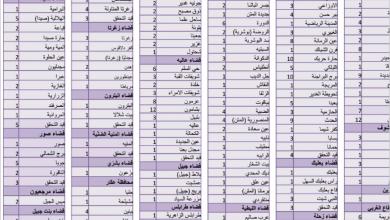 Photo of عدّاد كورونا يواصل ارتفاعه.. 560 إصابة جديدة و7 حالات وفاة ووزير الصحة: سنتمكّن من ضبط الإصابات يومياً