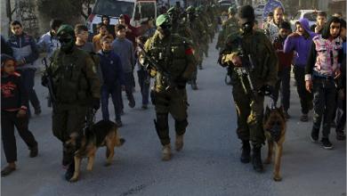 Photo of «كتائب القسام»:«كنز عسكري ثمين» في بحر غزة