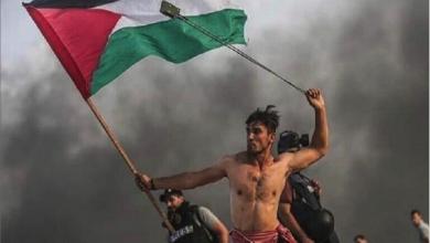Photo of أبو مرزوق: منظمة التحرير تمثل شعبنا الفلسطينيّ.. ولن نتخلّى عن المقاومة المسلّحة